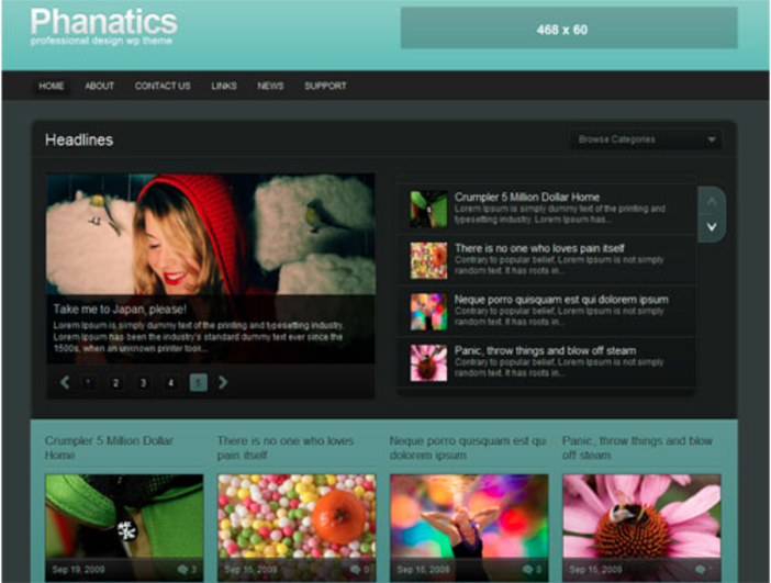phanatics wordpress theme